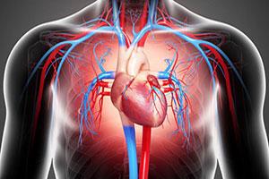 Cardiac-Profile