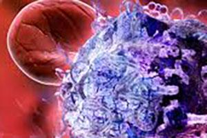 ImmunoGenetics